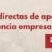 DECRETO 61/2021: Subvenciones extraordinarias de apoyo a la solvencia empresarial por la Covid-19.